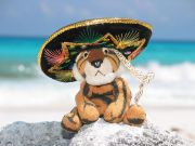 800px-Stuffed_tiger_wearing_a_sombrero